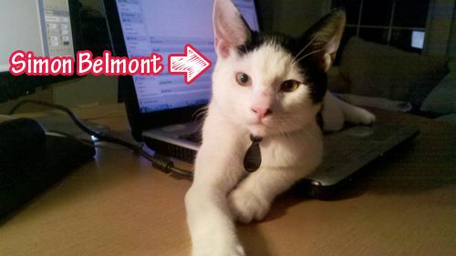 My Cat, Simon Belmont