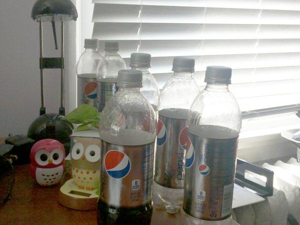 Diet Pepsi Bottles